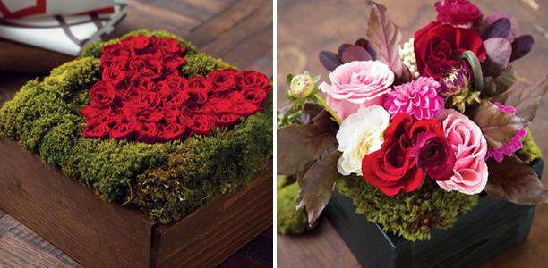Siennas-flower-garden-giveaway